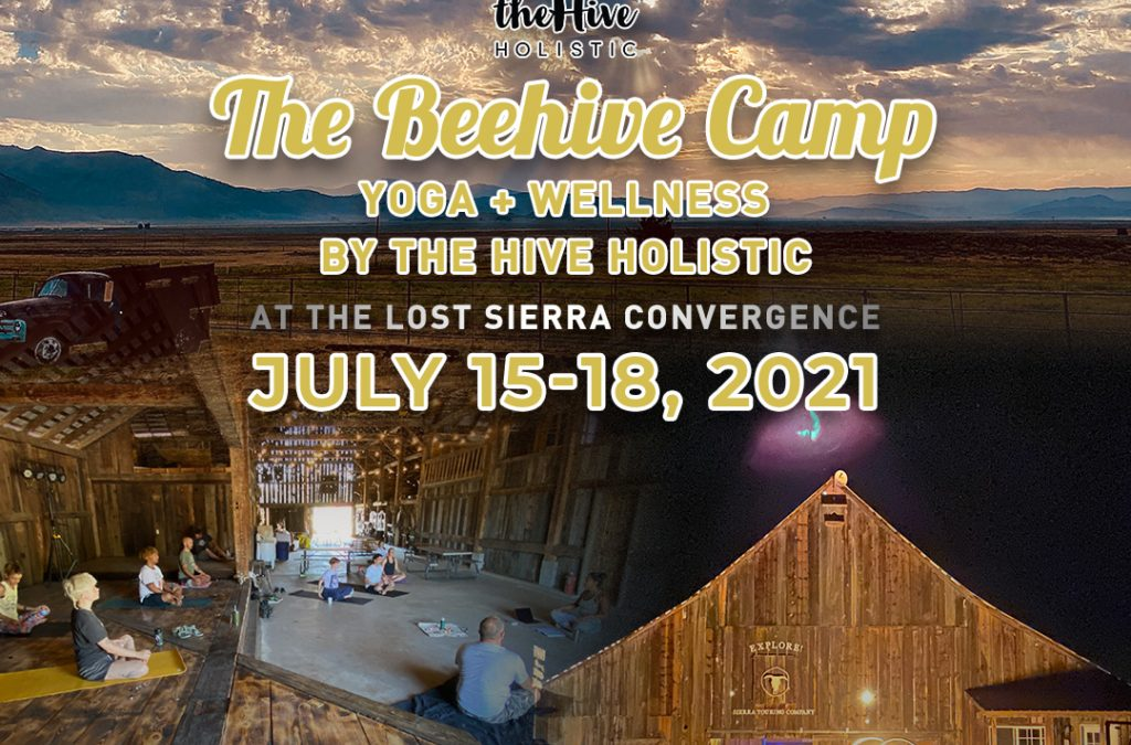 The Beehive Camp